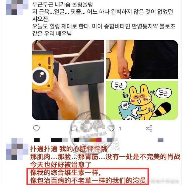 用词|肖战肌肉线条照韩国引热议,虎狼之词太多用词好绝,还给肖战定罪超搞笑?