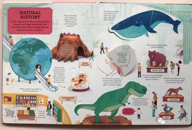 博物馆 为娃买书4年,这15套小众高颜值童书我喜欢到无法自拔 (1-15岁)